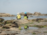 Porth Mear rock pools